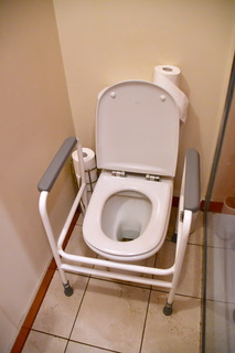 Toilet frame for elderly